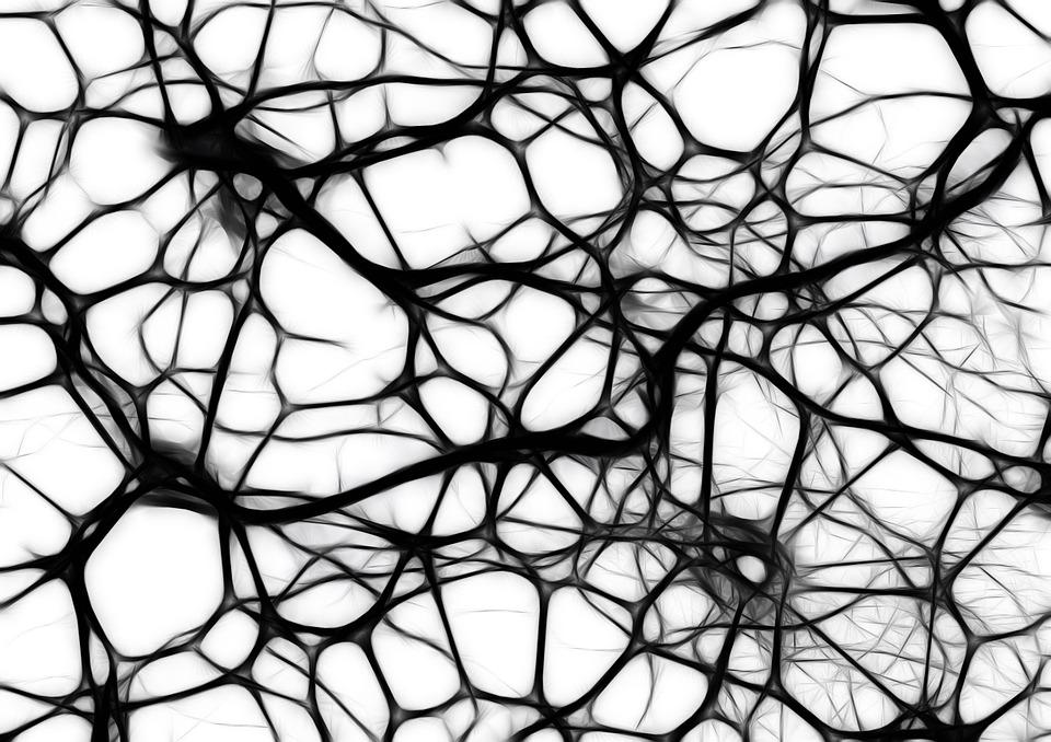 revolucija neuroraznolikosti
